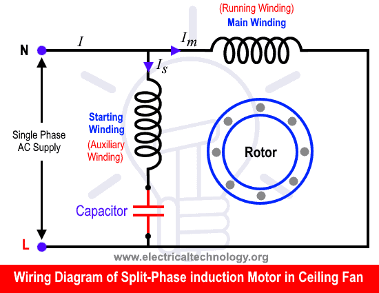 wiring diagram of split phase single phase induction motor in a ceiling fan